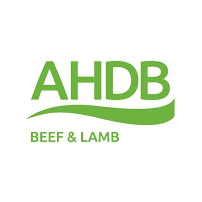 ahda-beef